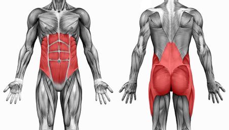 Неделя 02.Почему надо начать тренировки с мышц кора?